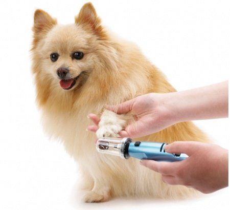 Top 9 Best Pet Nail Grinder in 2017
