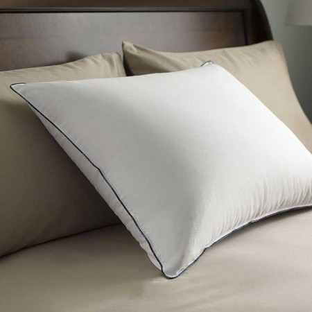 Pacific Coast Double Down-Around Pillow