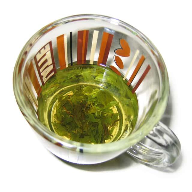 Top 9 Best Weight Loss Tea in 2017