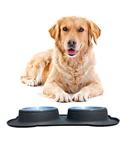 Top 9 Best Stainless Steel Dog Bowls 2017