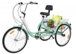 Barbella Adult 3 Wheel Bike