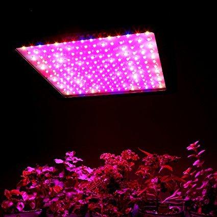 Best Full Spectrum LEDGrow Lights Right Now