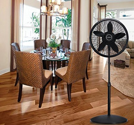 Top 9 Best Pedestal Fans Review