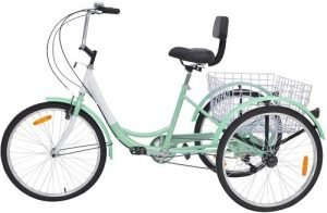 VANELL Adult Speed Tricycle