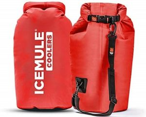 ICEMULE Classic Insulated Backpack Soft Cooler Bag
