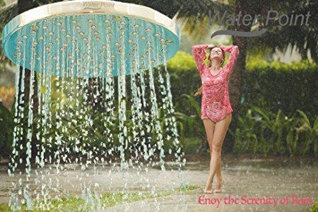 WaterPoint Rain Showerhead