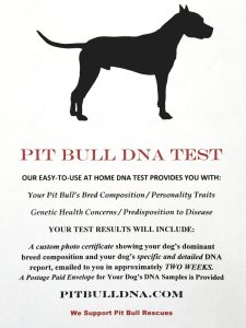 PitBull Dog DNA TEST