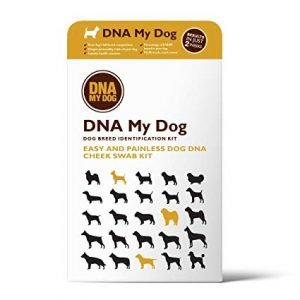 Hybrid Test -Wolf or Coyote Test plus Canine DNA Breed Identification Test
