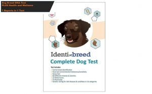 IdentiBreed The Most Complete Dog Breed Test
