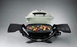 Weber 51080001 Q1200 Blue Lp Propane Gas Grill